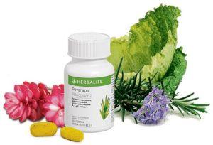 Роуз Гард - комплекс мощных антиоксидантов для продления молодости клеток