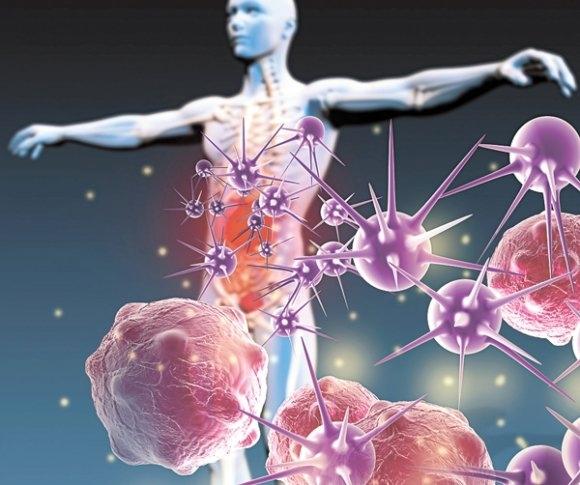Влияние питание на состояние иммунитета